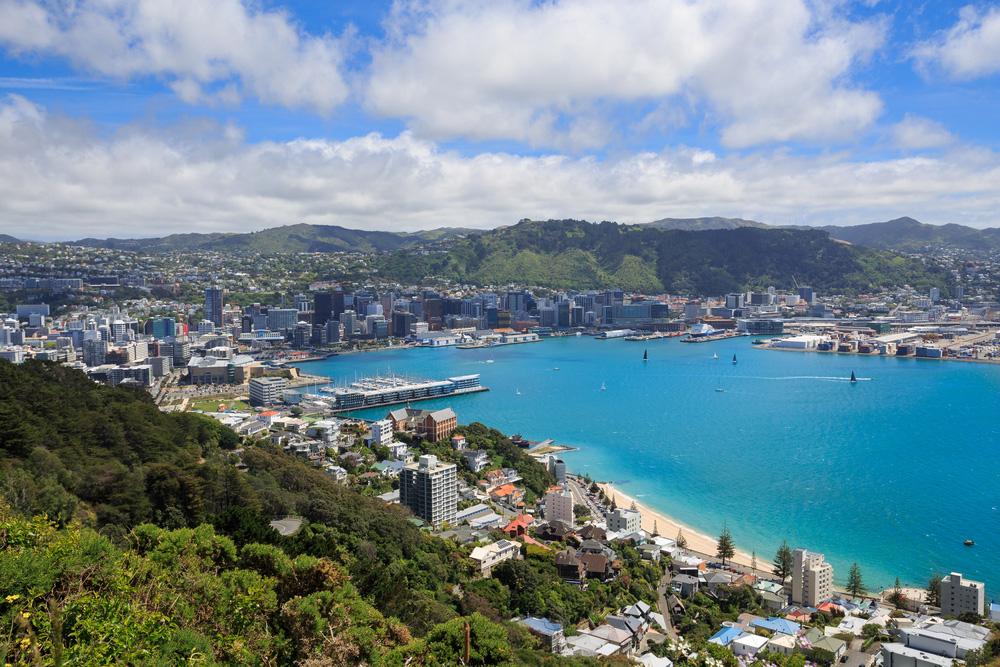 Hafen und Innenstadt von Wellington City